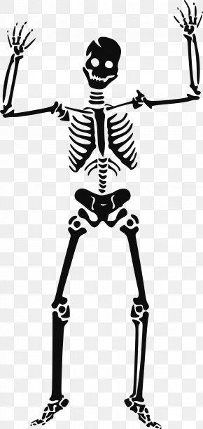 Skeleton Siluet Image - Skeleton Skull Clip Art PNG