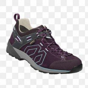 American Purple Gallinule - Hiking Boot Gore-Tex Outdoor Recreation Backpacking PNG