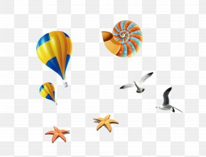 Hot Air Balloon Color Snail Starfish Seagull - Orthogastropoda Download Gratis PNG