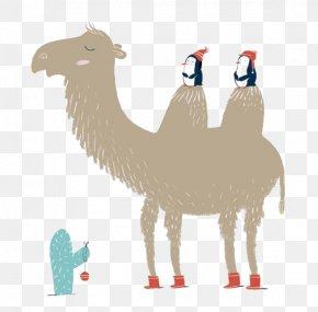 Penguin Sitting Camel - Camel Falling In Love Illustration PNG