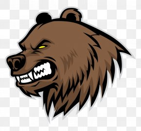 Bear - Grizzly Bear Drawing PNG