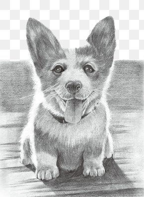 Dog - Dog Drawing Puppy Painting PNG