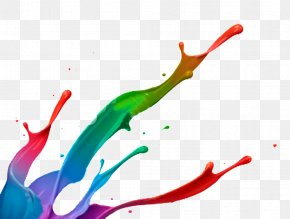 Brushes - Paint Color Desktop Wallpaper Clip Art PNG