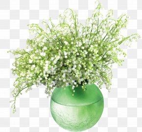 Lily Of The Valleyin Vase PNG Clip Art Image - The Lily Of The Valley Lilly's Valley Lilly Of The Valley Missionary Plant PNG