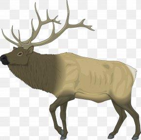 Raindeer Images - Elk Deer Moose Clip Art PNG
