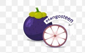 Eggplant - Fruit Purple Mangosteen PNG