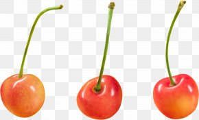 Cherry Image - Cherry Superfood Paprika Capsicum PNG