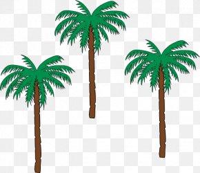 Date Palm - Arecaceae Date Palm Tree Plant Clip Art PNG