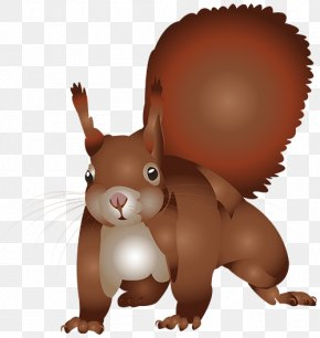 Brown Squirrel - Squirrel Cartoon Illustration PNG