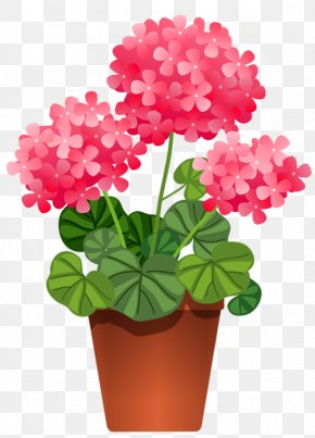 Potted Plant Cliparts - Houseplant Flower Clip Art PNG