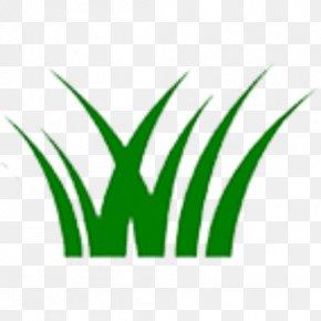Leaf - Leaf Logo Grasses Plant Stem Font PNG