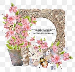 Summer Picnic - Floral Design Picture Frames Flower PNG