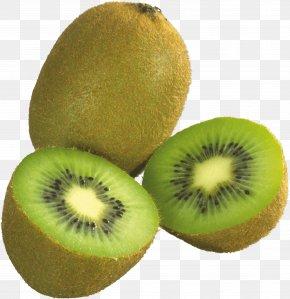 Kiwi Image Fruit Kiwi Pictures Download - Kiwifruit Clip Art PNG