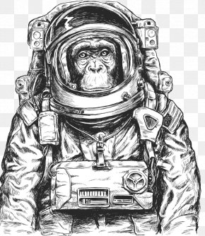 Astronaut Vector - Chimpanzee Monkeys And Apes In Space PNG