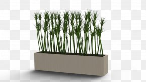 Flower Pot - Flowerpot Houseplant SolidWorks PNG