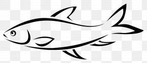 Line Art Fishing - Fishing Line Drawing Line Art Clip Art PNG