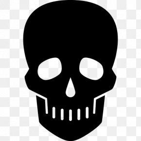 Skull Logo Image - Skeleton Skull Logo Icon PNG