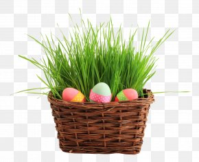 Easter Egg Basket - Easter Bunny Easter Egg Basket PNG