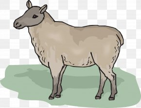 Sheep On The Grass - Sheep Clip Art PNG