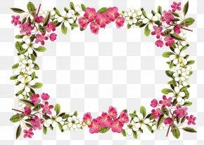 Floral Frame Image - Flower Rose Clip Art PNG