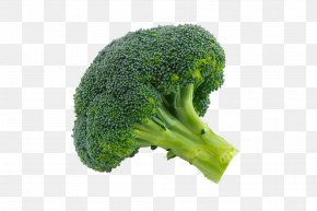 Broccoli - Broccoli Sprouts Cauliflower Vegetable PNG