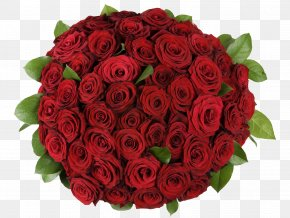 A Bouquet Of Roses - Garden Roses Flower Bouquet Petal PNG