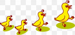 Creative Ducklings - Duck Chicken Rooster PNG
