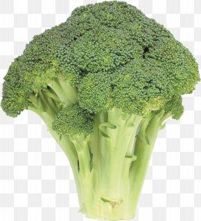 Broccoli - Cream Of Broccoli Soup Broccoli Slaw Clip Art PNG