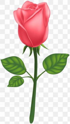 Red Deco Rose Clip Art Image - Garden Roses Centifolia Roses Petal Leaf Clip Art PNG