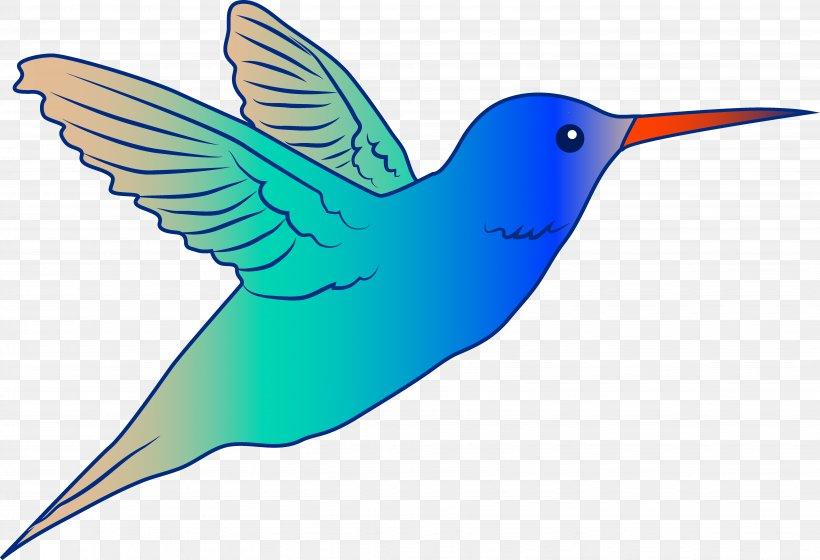 Hummingbird Drawing Royalty-free Free Content Clip Art, PNG, 6331x4331px, Hummingbird, Beak, Bird, Broad Tailed Hummingbird, Drawing Download Free