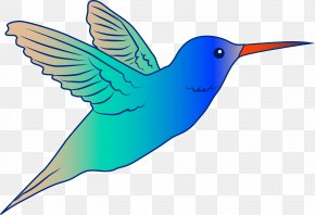 Free Hummingbird Clipart - Hummingbird Drawing Royalty-free Free Content Clip Art PNG