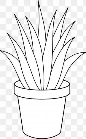 Black And White Plants - Aloe Vera Houseplant Black And White Clip Art PNG