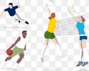 Basketball Volleyball Handball Player - 2016 Summer Olympics Volleyball Euclidean Vector Motion PNG