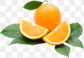 Orange Image, Free Download - Juice Lemon Orange Calorie Tangerine PNG