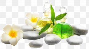 Mother Spa Package - Essential Oil Citronella Oil Aromatherapy Spa PNG