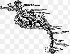 White Animal Skeleton - Seahorse Drawing Skeleton Clip Art PNG