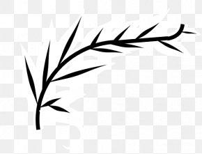 Leaf - Twig Grasses Plant Stem Leaf Clip Art PNG