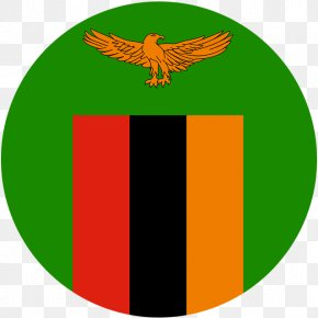 Flag Of Zambia - Football Association Of Zambia Green Logo Flag Of Zambia PNG