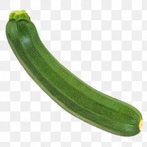 Cucumber - Armenian Cucumber Summer Squash Luffa Cucurbita PNG