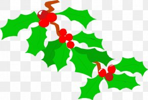 Christmas Leaves Cliparts - Common Holly Clip Art PNG