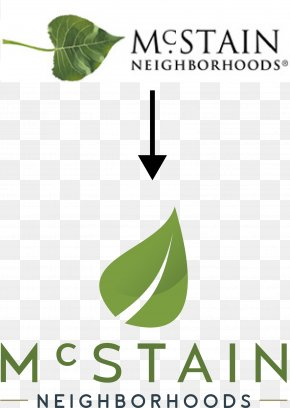 Leaf - Leaf Logo Green Font Brand PNG