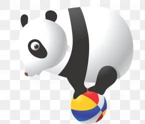 Giant Panda - The Giant Panda Bear Wall Decal Clip Art PNG
