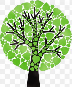 Branch Woody Plant - Green Leaf Tree Plant Clip Art PNG