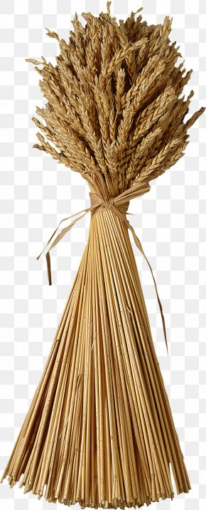 Wheat - Wheat Sheaf Clip Art PNG