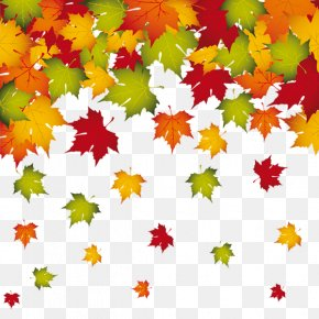 Falling Autumn Leaves Border - Autumn Leaf Color PNG