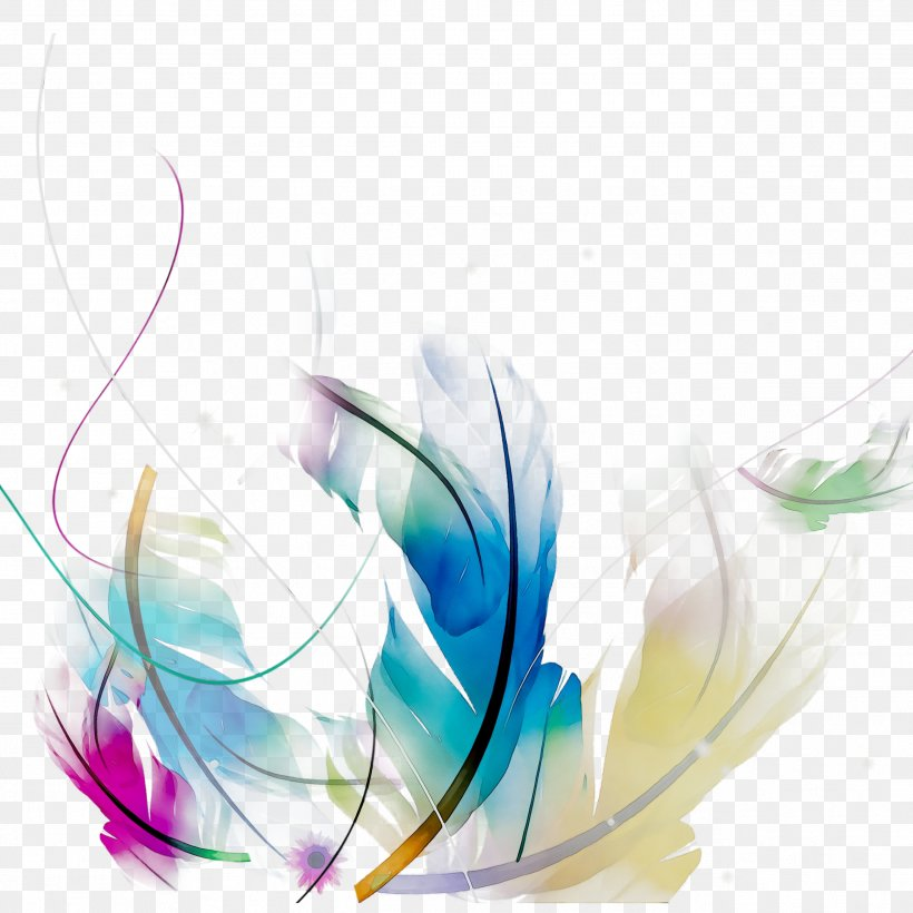 Graphic Design Clip Art Adobe Photoshop Png 2586x2586px Computer Adobe Inc Fashion Accessory Feather White Download