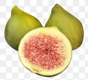 Fig - Common Fig Fruit Food PNG