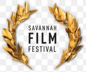 Savannah College Of Art And Design - Savannah College Of Art And Design Savannah Film Festival Film Director PNG