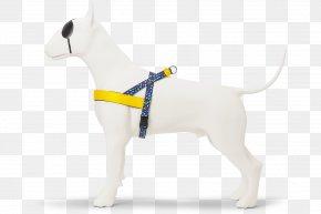 Dog - Dog Collar Leash Puppy Dog Harness PNG
