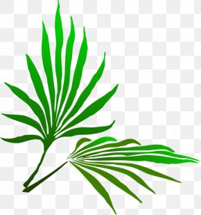 Palm Branch Cliparts - Palm Sunday Palm Branch Easter Clip Art PNG